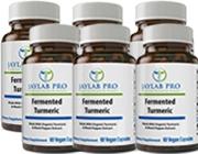 Fermented Turmeric 6 Bottles