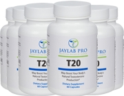 Jaylab Pro T20 6 Pack (men only)